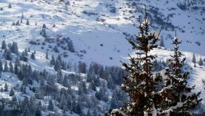 Meribel 2 by Lady-Kiwi
