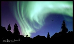 The Aurora Borealis by s3vendays