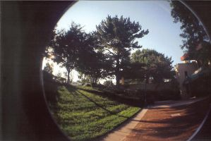fisheye 2. by BamBamKia