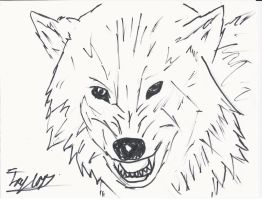 Awesome Wolf Sketch! by bieber90pink