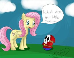 Fluttershy and Shy Guy by crhonox