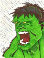 The Hulk for KidNotorious by BRHBumbleBee