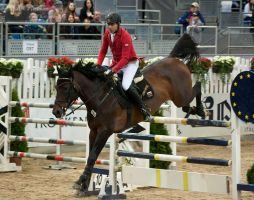 CSI3*_8 by CalyHoney