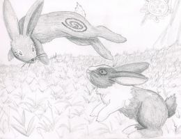 The Coming of the Black Rabbit by Ferngirl
