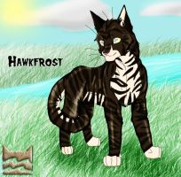:. HawkFrost by FusionOverHype