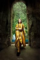 Elrond, Lord of Rivendell by JoviClaire