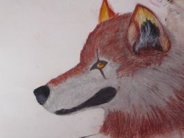 Wolf looking at you by Swiftlook