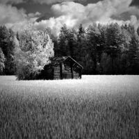 IR Farm by 1uno
