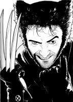 Wolverine 2 by DMThompson