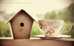 Hut by DREAM-PHOTOGRAFY