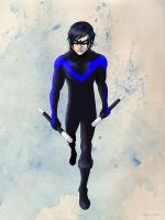 Nightwing by Noahlitz