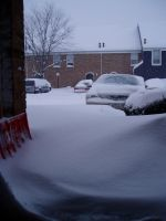 Blizzard 2008 Picture 0019 by lilly-peacecraft