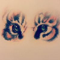 Eye of the Tiger by dampdonuts