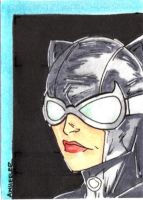 Catwoman Sketchcard by wheels9696
