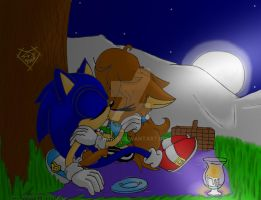 :Late:Sonic and Sonar Valentines Day by Sonar15