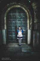 American McGee's Alice. Dark door. by hmcindie