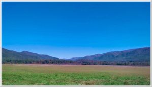 Cades Cove Scenery 30 by slowdog294