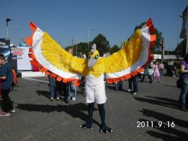 A shiny Ho-Oh appears Pokemon Day 2012 Hannover by Senria-chan