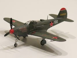 Bell P-39N-5 Airacobra 42-9004 by kanyiko