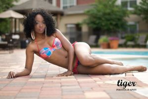 Exie laying by the pool by tigerphotography