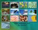 Vista Wallpaper Pack 1 by Drum-and-Bass-Junkie