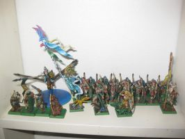 My Warhammer Collection part 3 by Safetoss