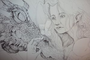 An Elf and her Dragon- WIP by musicalartfreak