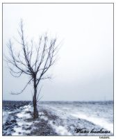 Winter loneliness by tzunoi