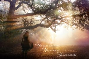 CS Lewis Quote - Photo Manip by Joojie99