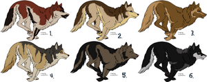 Wolf Adoptables 2 CLOSED by johndimplechester