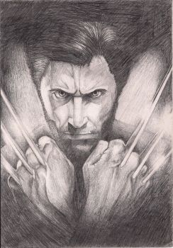 The Wolverine by PoisonedRose12