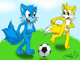 Misha and Tails: Soccer Time by RoninHunt0987