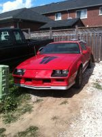 72. My First Car a.k.a My New Baby by Skeletal-K9