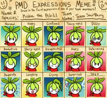 PMD Expressions Meme-Kisha by Chocolate-Chip-Cooky