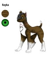 Rayka by OutsidersJoy
