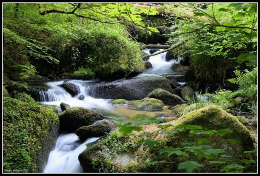 River of Green 2 by Kernow-Photography
