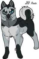 Husky Point Adopt 16 GONE by Kasara-Designs