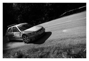 Rally_Mt_Blanc_3 by Skys0