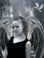 Silver Angel by VisualPoetress