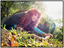 Princess Merida 02 by emptyfilmroll