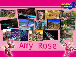 Sonic Riders Amy Wallpaper by xXCharleneBrendsxX