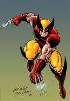 Wolverine by FrozenHRT