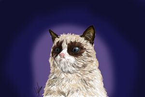 grumpy cat by clementine-petrova