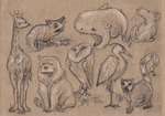 sketches by GrayOwl
