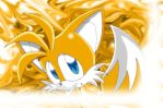 A sweet little Tails by Amarena-Berry