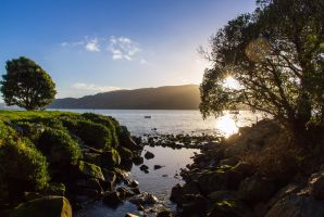 Macandrew Bay by firouz222