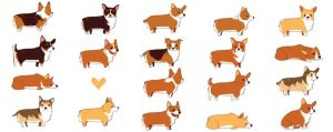 A lot of corgis by olliewhen