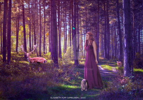 Magic of the Forest by AoifeArt