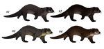 Natural otter Adoptables [CLOSED] by ForeignFrontierRanch