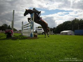 British Show Jumping 94 by mapal-stock